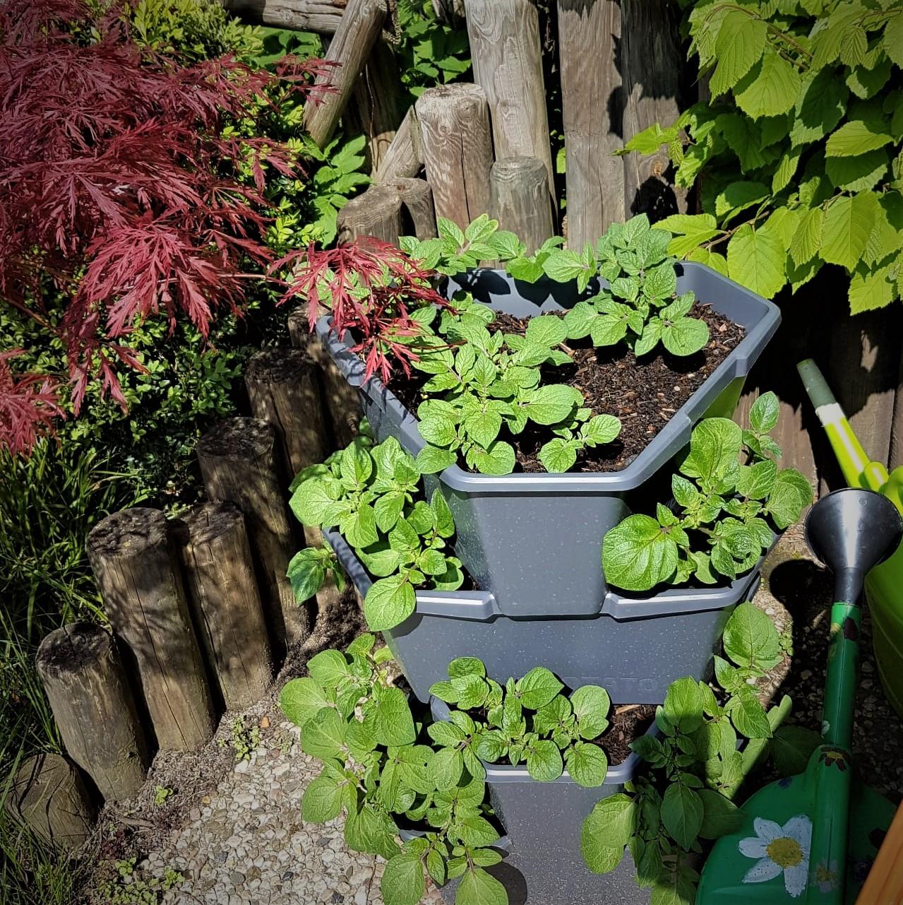 Pflanzturm in einem kleinen Garten